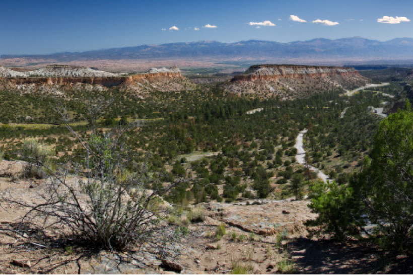 NAEP Environmental Stewardship Award Earned by LANL Trails Management Program