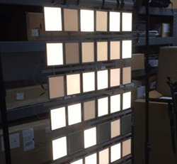 INDIVIDUALLY ADDRESSABLE OLED PANELS IN ACUITY'S CANVIS LUMINAIRE