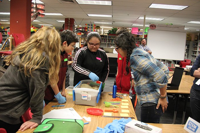 Middle school students use scientific methods to characterize items in soil during a STEM Like Me! session with Hanford Site workers.