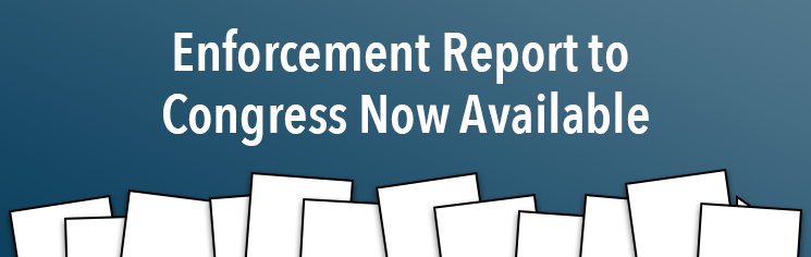 Enforcement Annual Report to Congress