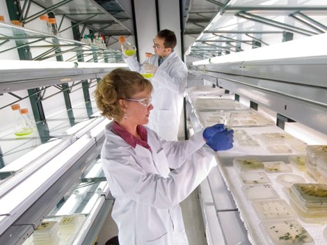 a photo of two scientists in a algae lab