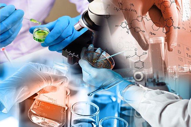 Together, microbiologists, computational biologists, electrochemists, inorganic chemists, biochemists, theorists, and bio-engineers learn how electron bifurcation works.