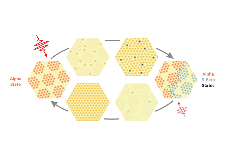Single pulses of laser light can switch tantalum disulfide from one state to another and back again. This image illustrates how the material switches between its alpha and beta states. Switches like this could lead to new forms of data storage.