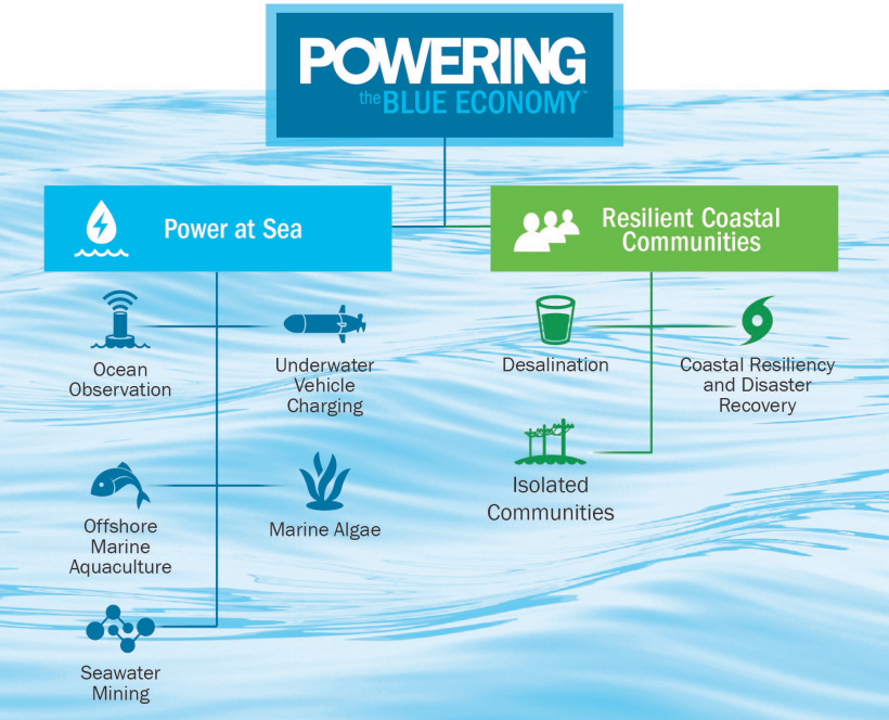 Powering the Blue Economy initiatives in a tree diagram.