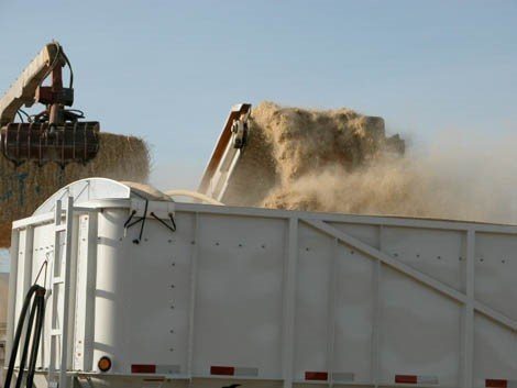 In this photo, preprocessed biomass is being loaded into a trailer that will either deliver the biomass feedstock to a biorefinery or will act as a temporary storage container for the biomass.