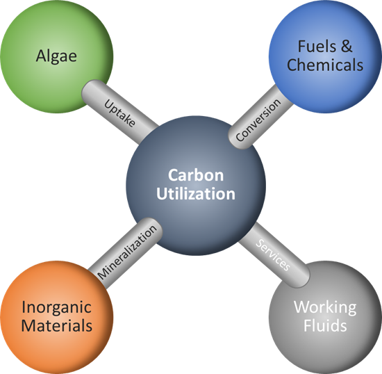 Carbon Utilization Diagram