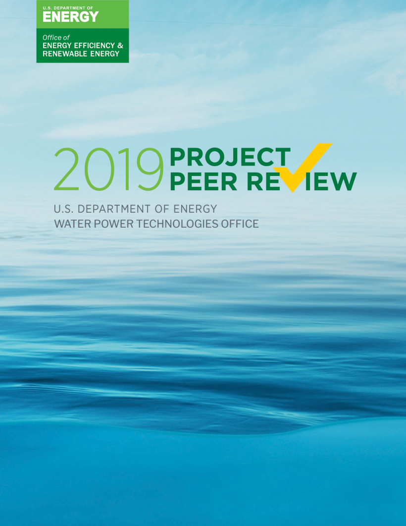 Illustrated cover of the WPTO 2019 peer review report.