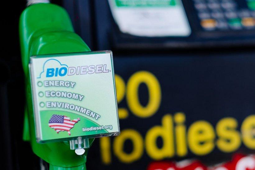 Biodiesel dispenser nozzle.