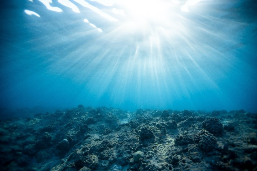 The ocean's surface.