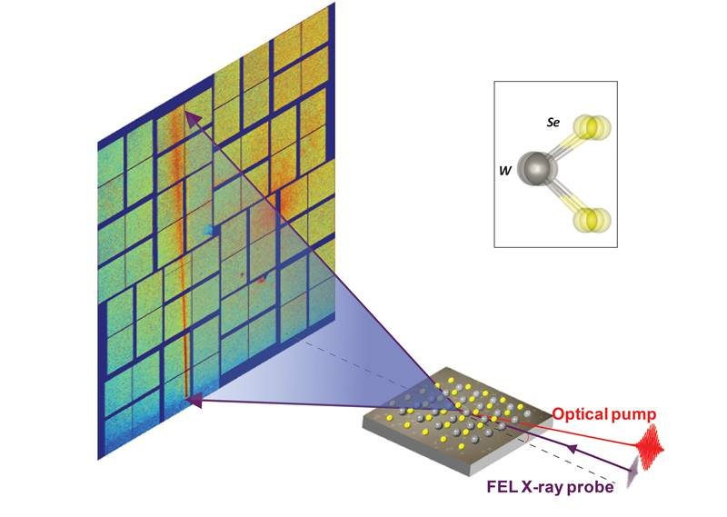 An ultrafast X-ray probe scatters from a molecular sheet (grey and yellow) energized by laser light. A multi-element detector captures the scattered X-rays (purple), making a distinctive pattern that correlates with atoms' positions and vibrations.