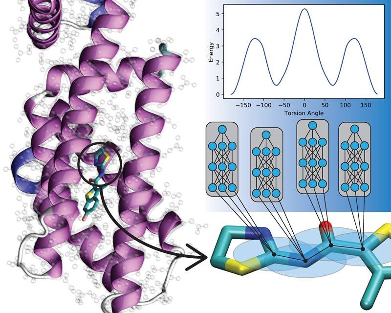 New deep learning models predict the interactions between atoms in organic molecules. These models could help computational biologists and drug development researchers understand and treat disease.
