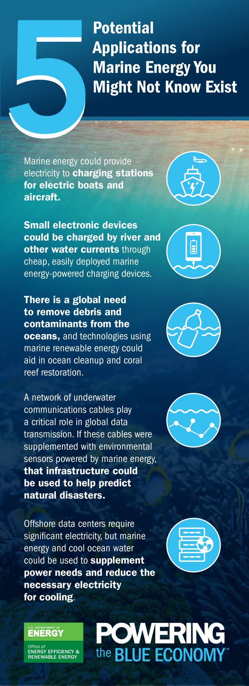 world ocean month infographic wpto