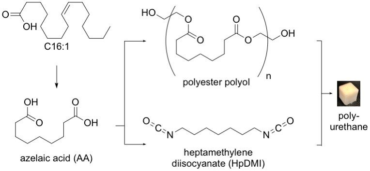 A Chemical formula of the conversation to polyurthane