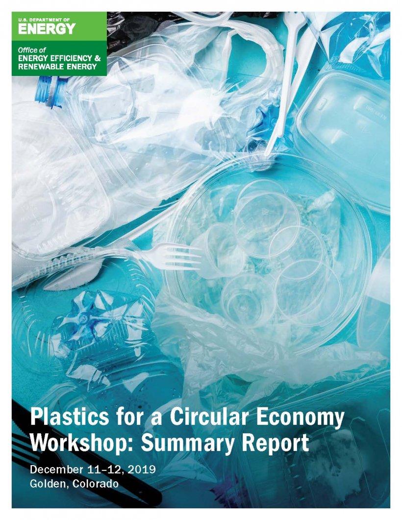 screenshot of the Plastics for a Circular Economy Workshop: Summary Report