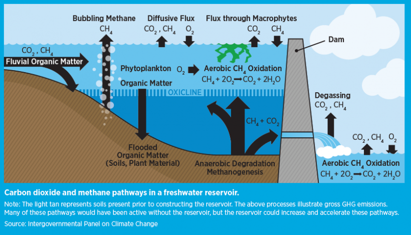 Illustration showing carbon dioxide and methane pathways in a freshwater reservoir.