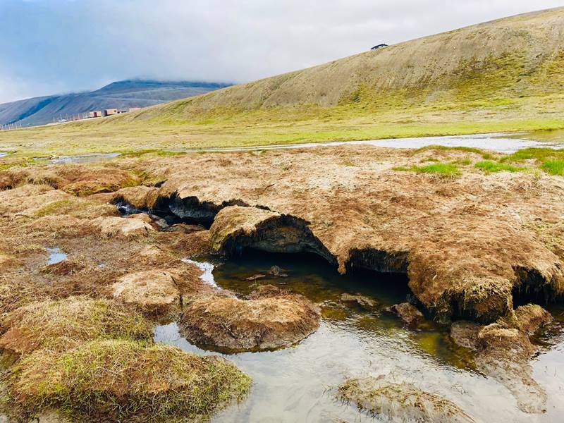 A new study of permafrost thawing in Svalbard, Norway, suggests substantial, sustained release of carbon dioxide when these soils decompose.