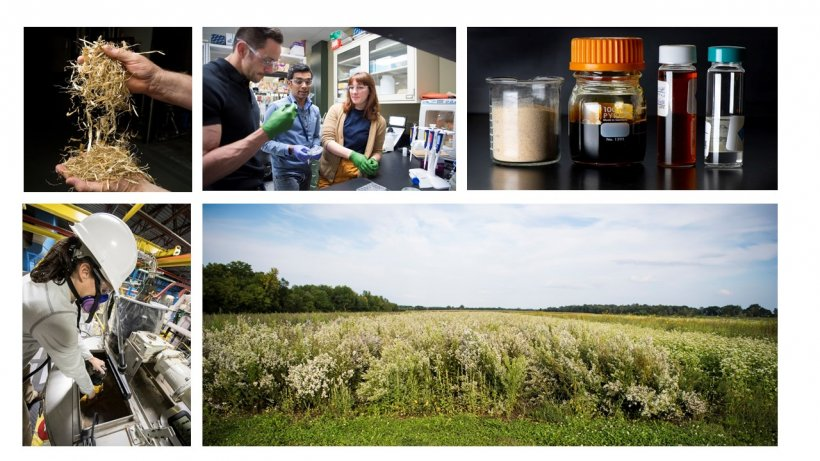 a collage of feedstock images