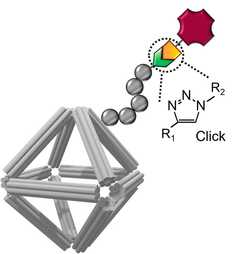 Schematic of a DNA origami equipped with imaging and cell-targeting capabilities. Click chemistry was used to conjugate functional molecules on the peptoid-coated origami surface.