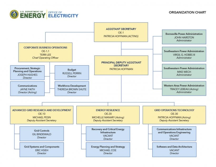 This is a visual breakdown of the OE organizational structure.