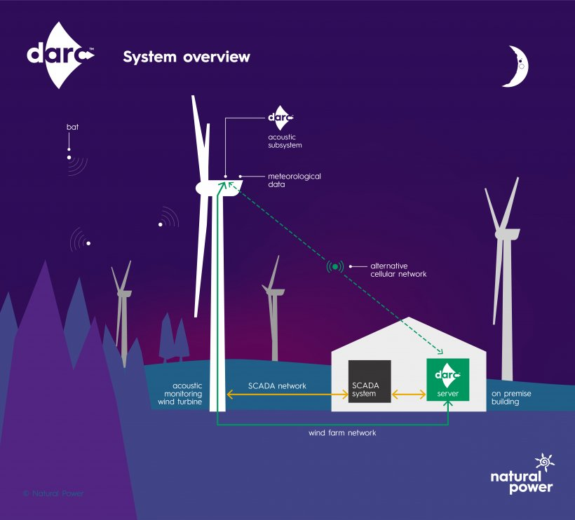 An illustration showing a building with four wind turbines nearby, with trees and a night sky. Labels indicate bats and the locations of DARC system monitoring features.