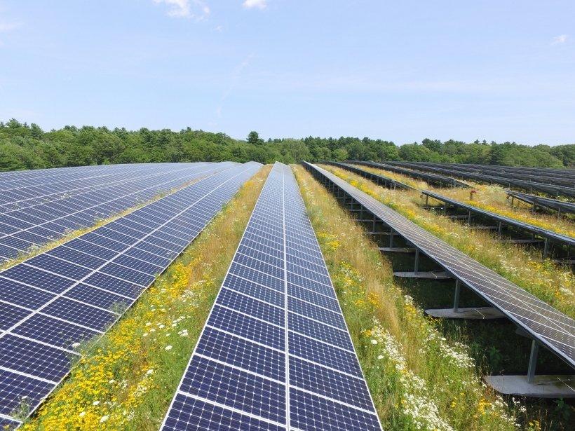 a solar array on a landfill in Massachusetts.