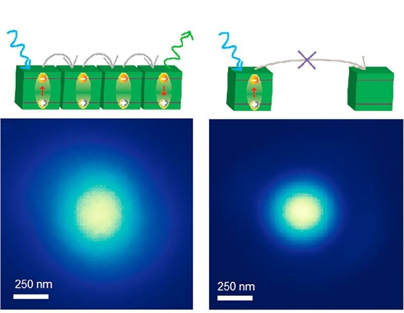 By coating a substrate with chemicals that perovskite nanocrystals attach to, researchers formed a layer of tightly packed nanocrystals. This system had a record exciton diffusion length, measured by directly visualizing diffusion with a custom microscope.