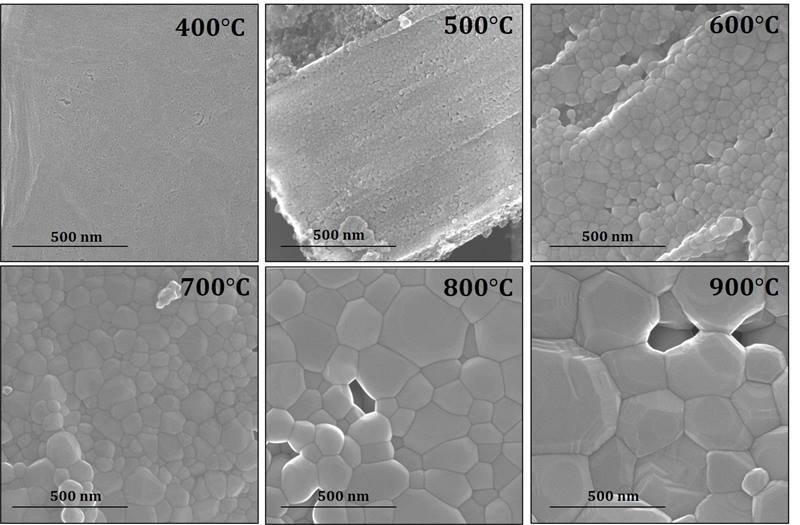 Electron micrographs show neptunium dioxide grain size increases with increasing temperature. Processing the material at higher temperature increases its grain size and reduces its movement into the environment.