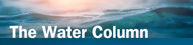 """Banner that says """"The Water Column"""""""