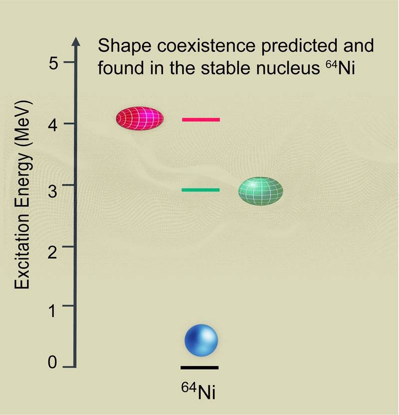 The evolution of the nuclear shape in stable Nickel-64 as predicted by large-scale nuclear model calculations. Now, new research has confirmed these three nuclear shapes.