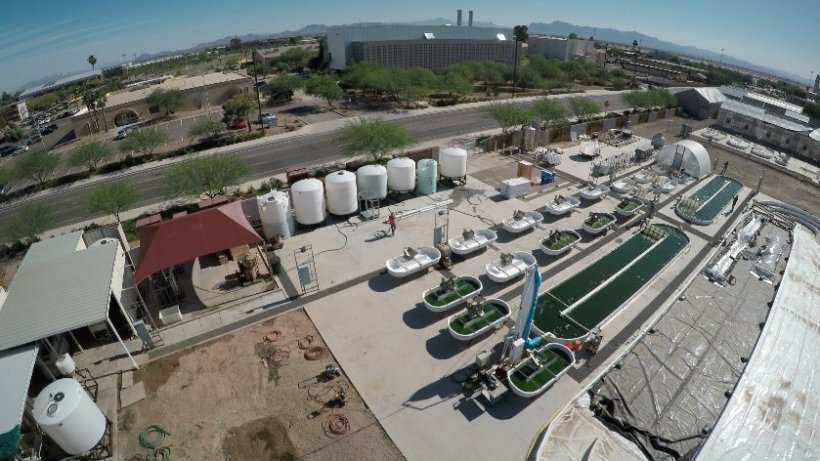 NREL's indoor cultivators mimic the outdoor conditions at the Arizona Center for Algae Technology and Innovation, pictured here.