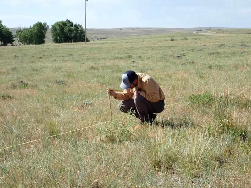 Holbrook collecting data for a rangeland health assessment.