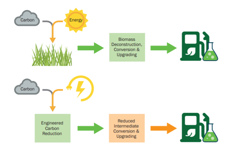 Diagram showing cycle of engineered carbon reduction.