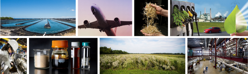 a montage of the different BETO feedstocks. Algae pongs, airplanes, labs and fields.