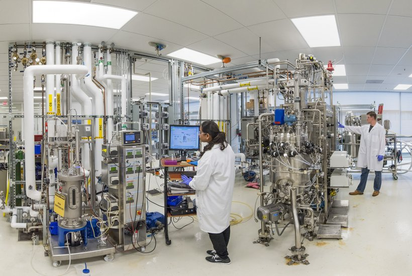 A researcher checks a computer monitor inside of the Advanced Biofuels Process Demonstration Unit at Lawrence Berkeley National Laboratory.