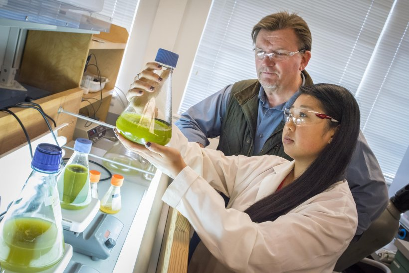 Photo of a female student scientist holding up a bottle of algae while a teacher looks on.