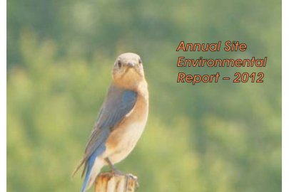 2012 Portsmouth Annual Site Environmental Report