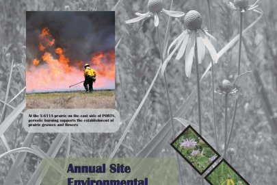 2015 Portsmouth Annual Site Environmental Report