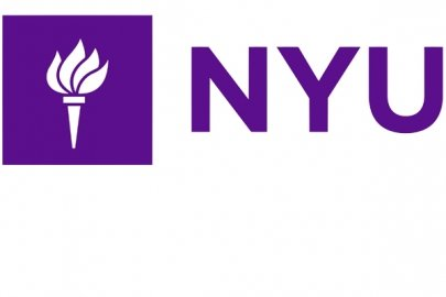 """NYU Chemist Receives Department of Energy Grant for Plastic """"Upcycling"""" Research"""
