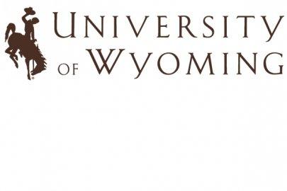 UW Students Receive DOE Science Undergraduate Laboratory Internships