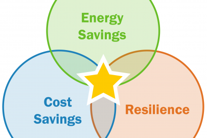 Distributed Energy Resources for Resilience