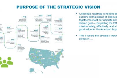 Purpose of the Strategic Vision