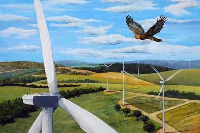 Exploring Eagle Hearing and Vision Capabilities To Reduce Risk at Wind Farms