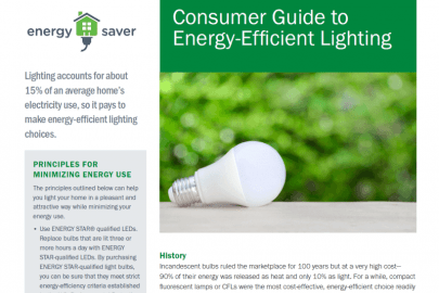 Consumer Guide to Energy-Efficient Lighting Fact Sheet