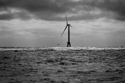 Energy Department and Federal Partners Announce up to $14.5 Million for Offshore Wind Environmental Research