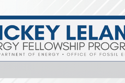 INFOGRAPHIC: Mickey Leland Energy Fellowship