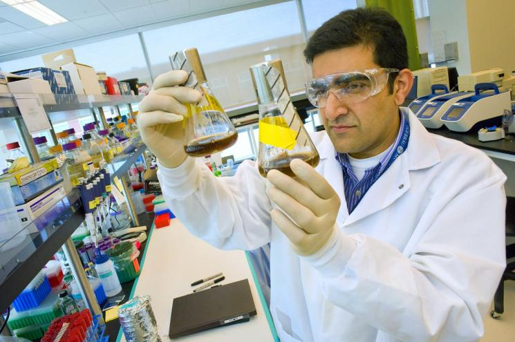 Rajit Sapar analyzes samples at the Joint BioEnergy Institute's lab. | Photo by Roy Kaltschmidt at Lawrence Berkeley National Lab.