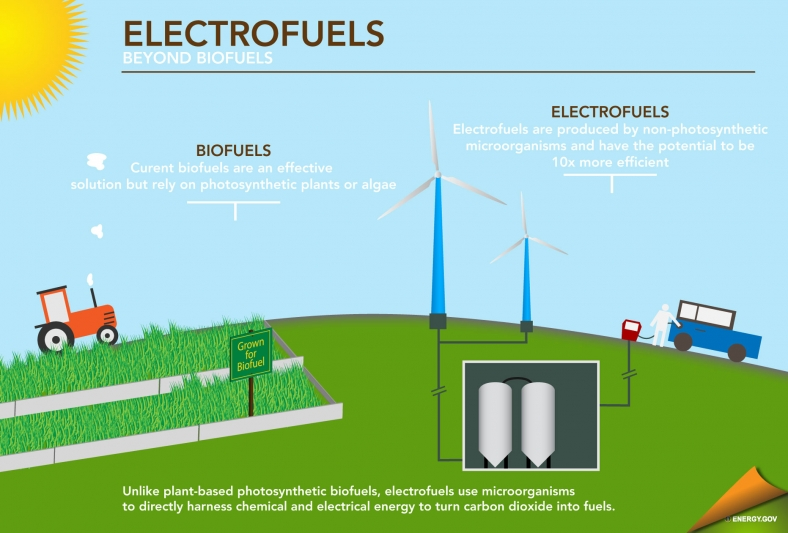 Electrofuels: Tiny Organisms Making a Big Impact
