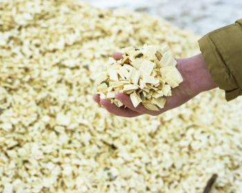 Wood waste such as this is frequently used to produce sustainable energy. Spero Energy, started by researchers at Purdue University, has created a cost effective process that converts sustainable wood sources into chemicals that improve the production of biofuels.  | Photo by National Renewable Energy Laboratory