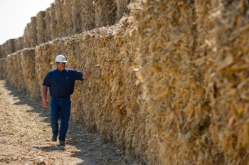 American farmers harvest 80 million acres of corn each autumn. The corn stover usually left on a hewn field can be processed into a renewable transportation fuel called bioethanol. | Image courtesy of POET