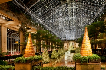 This is part of the holiday light display at Longwood Gardens in Pennsylvania's Brandwine Valley. This year, they commissioned an American-made 1.2 megawatt, 10.7-acre solar field as part of their goal to generate three megawatts of renewable energy by 2018. | Photo courtesy of Longwood Gardens/W. Hill